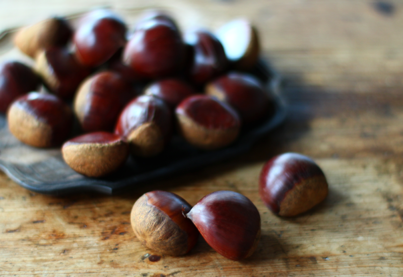 栗 chestnut